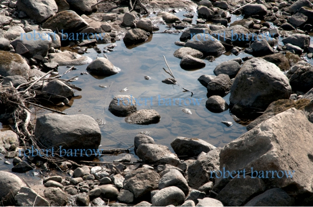 my river 016